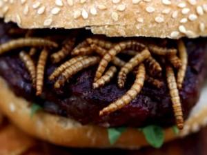 Hamburger-con-insetti-e-vermi