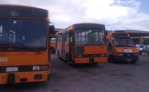 bus_ast