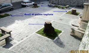 PALME TAGLIATE