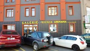 galleria ceca