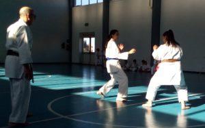 karate-comb-2